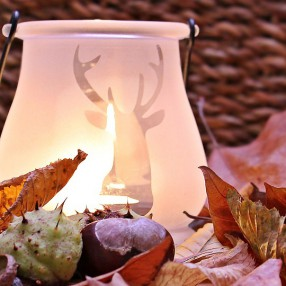 Őszi dekorációs tippek a DIY szerelmeseinek