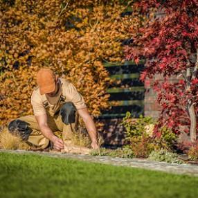 Itt az ősz, kerti munkákra fel!